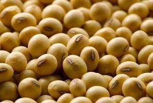 Beneficios de las Isoflavonas de soja y para qué sirven