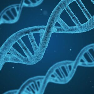 saber mas sobre la clonacion capilar
